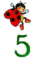 5-jpeg