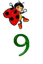 9-jpeg