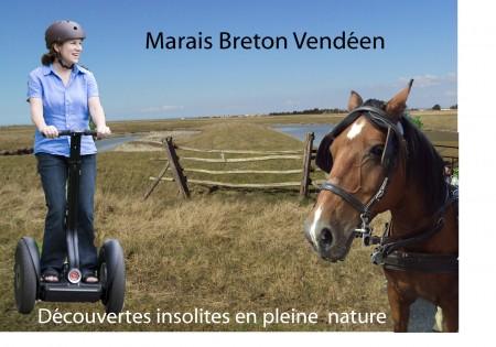 Gyropodes caleche marais breton