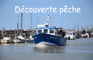 decouverte peche